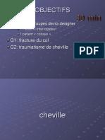 Cours Cheville D1 Bis