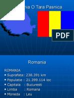 Www.nicepps.ro 5434 Romania Casa Noastra