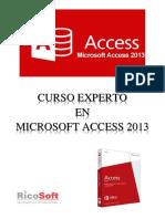 Curso Experto en Microsoft Access 2013