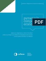 Pymes y la Competencia Económica