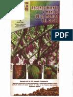 Recolección y Manejo de La Monilia Del Cacao