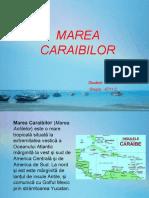 Marea Caraibilor