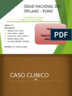 GRUPO N° 5. PSICOPATOLOGÍA - TRASTORNO DE ANSIEDAD
