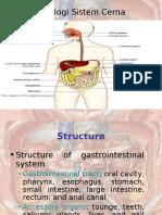 Fisiologi Gastro Intestinal