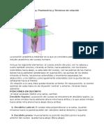 La Posición Anatómica, Planos Anatomicos, Terminologia Anatomica de Relacion, De Posicion y de Movimiento