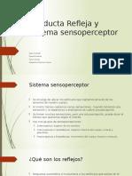 Conducta Refleja y Sistema Sensoperceptor