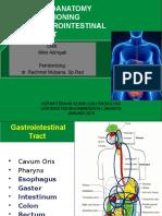 Refreshing Traktus Gastrointestinal