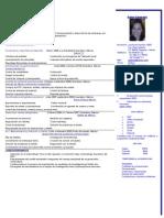 CV Example Spanish