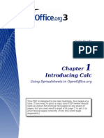 Open Office - Calc Guide