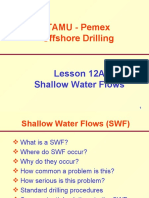 12A. Shallow Water Flows