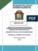 PERFIL CORREGIDOVITULAS 2.pdf