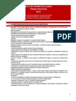 101 Fise Tehnice Lucru - Proba Practic 2015