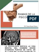 ramasdelapsicologia-130502151923-phpapp01.pptx