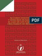 Acciones Positivas y Derechos Humanos. El Caso de Los Pueblos Originarios de México