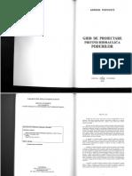 Ghid de Proiectare Privind Hidraulica Podurilor - Adrian Popovici