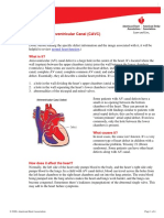 Complete Atrioventricular Canal (CAVC)