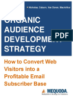 Audience Development Strategy