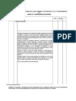 Anexo_Programa_Auditoría_modelo (1) ENVIAR (1) (2)