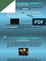 Fungi-Introduction1.ppt