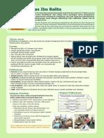 Information Sheet Kelas Ibu Balita.pdf