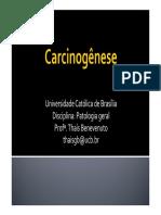 4.2.Carcinogênese[1]