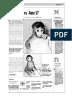 ¿Quién es Andi?
