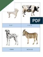 Carduri Cu Animale WORD