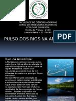 Seminário de Ecologia - Pulso Dos Rios Na Amazonia
