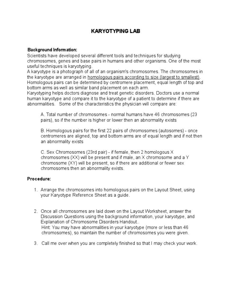 3 Karyotyping Lab Karyotype – Karyotypes Worksheet