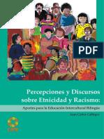 Calliros Percepciones y Discursos Sobre Etnicidad y Racismo