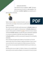 DEFINICIÓN DE BOMBA