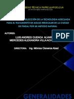 HUMEDAL DE FLUJO SUBSUPERFICIAL