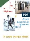 Grozaviile Neasemanate de La Draganescu Si Viata Parintelui Arsenie Boca in Lumina Sfintilor Parinti