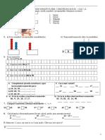 Test de Evaluare Sumativa Sem I Cls. I