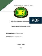 Informe Practicas Iniciales UNCP