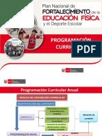 Programación Curricular