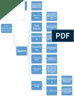 origen y desarrollo  del genero lirico