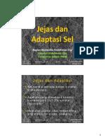 Microsoft PowerPoint - Jejas dan Adaptasi Sel-2015-1.pdf