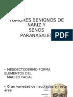 9. Neoplasias Benignas de Nariz y Senos Paranasales 2