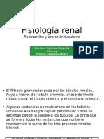 Fisio Renal (1)