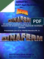 DINAFERM LEVADURAS