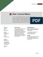 Risk Control Matrix Coso Framework_Casestudy