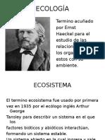 Eco Anual Integral