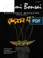 Origami Bonsai Electronic Magazine Beyond the Square Vol 2 Iss 3