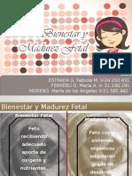 Bienestar y Madurez Fetal