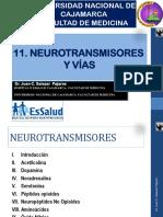 11 Neurotransmisores y Vías 2015