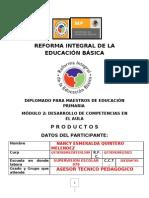 Reforma Integral de La Educacion Basica Nancy Quintero