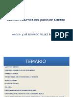 Argos Presentación Utilidad Practica Del Juicio de Amparo