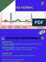 Ekg Normal (118)