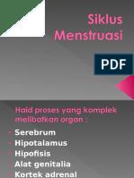 s.Menstruasi.ppt